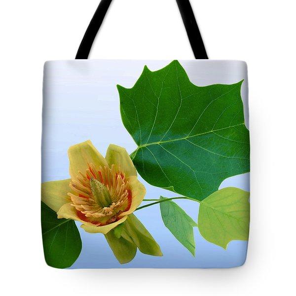Tulip Poplar Tulip Tote Bag by Kristin Elmquist