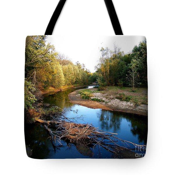 Twisted Creek Tote Bag