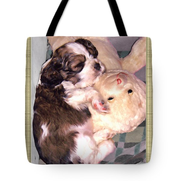 Two Stuffed Animals Tote Bag by Debbie Portwood
