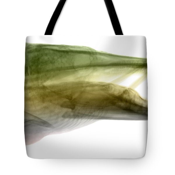 X-ray Of Muskie Tote Bag