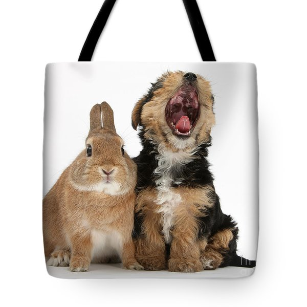 Yorkshire Terrier Pup With Rabbit Tote Bag by Mark Taylor