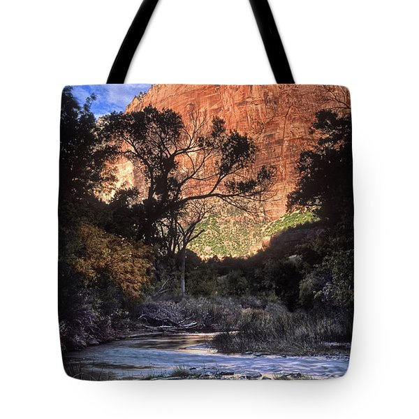 Zion National Park View Tote Bag by Dave Mills