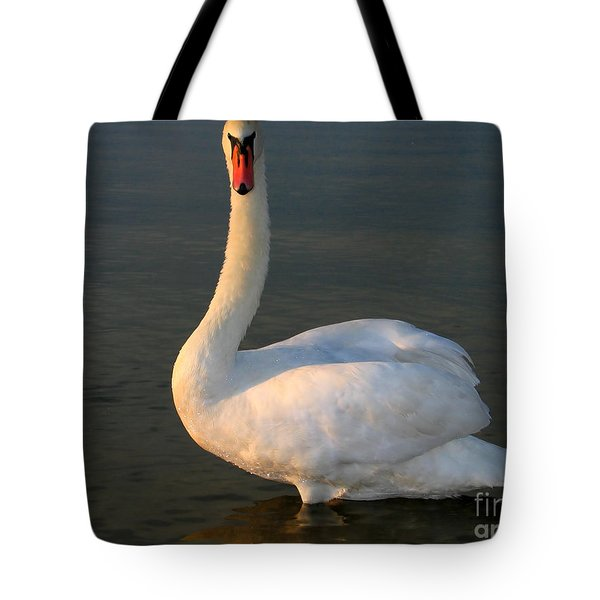 Tote Bag featuring the photograph Swan by Odon Czintos