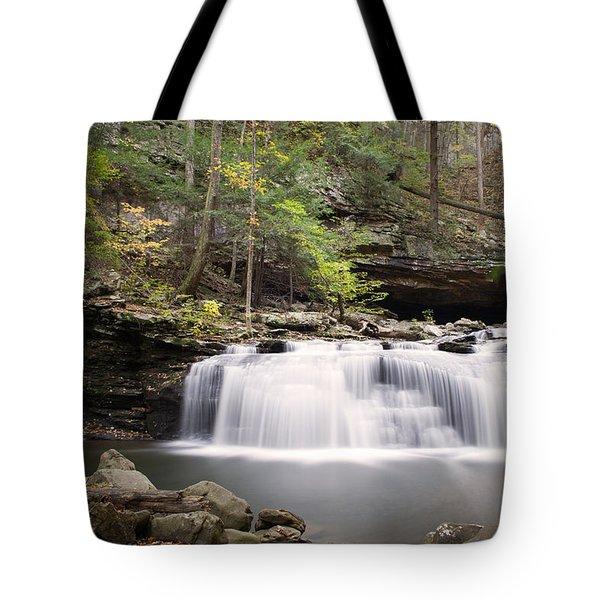 Waterfall Tote Bag by David Troxel