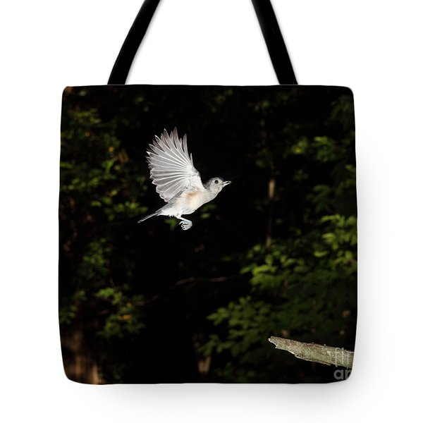 Tufted Titmouse In Flight Tote Bag by Ted Kinsman