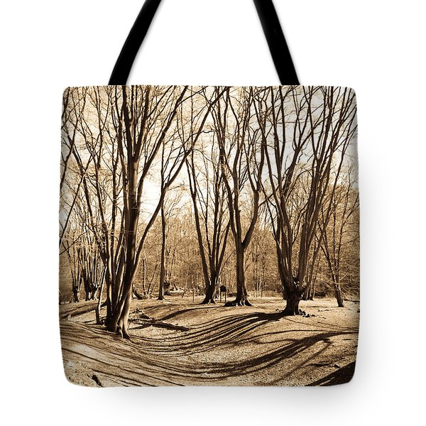 Ambresbury Banks Bronze Age Fortification Tote Bag by David Pyatt