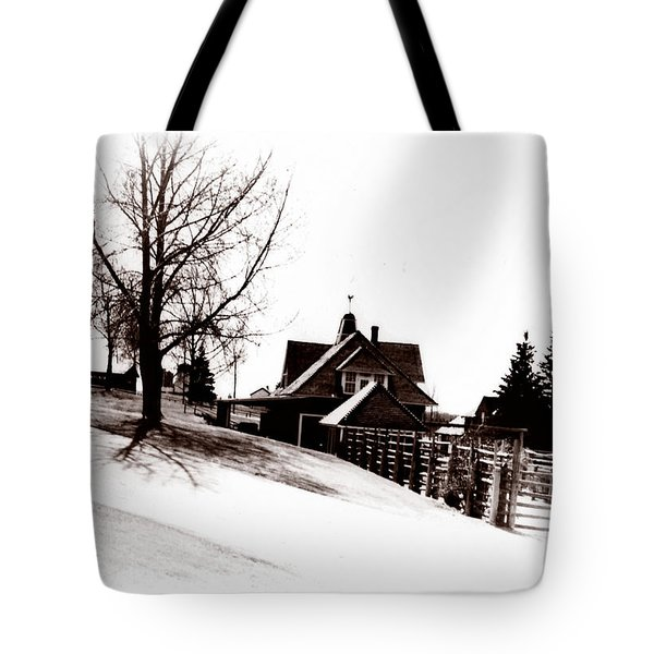 1900 Farm Home Tote Bag by Marcin and Dawid Witukiewicz