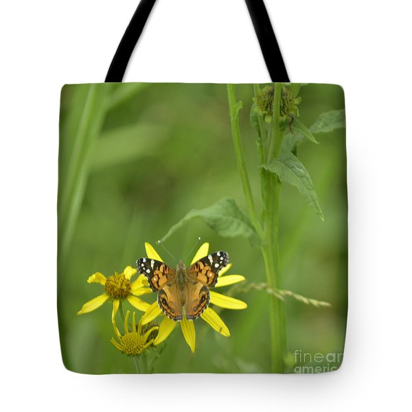 American Painted Lady Tote Bag