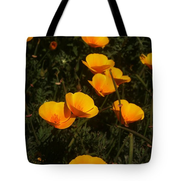 Big Sur California Tote Bag