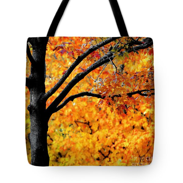 Blaze Tote Bag by Optical Playground By MP Ray