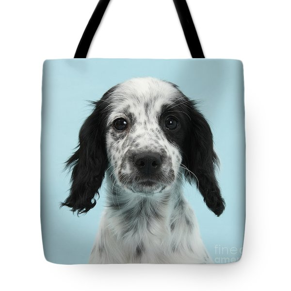 Border Collie X Cocker Spaniel Puppy Tote Bag by Mark Taylor