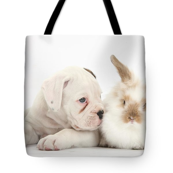 Boxer Puppy And Young Fluffy Rabbit Tote Bag by Mark Taylor