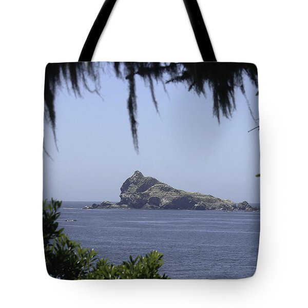 Tote Bag featuring the photograph Castle Rock by Betty Depee