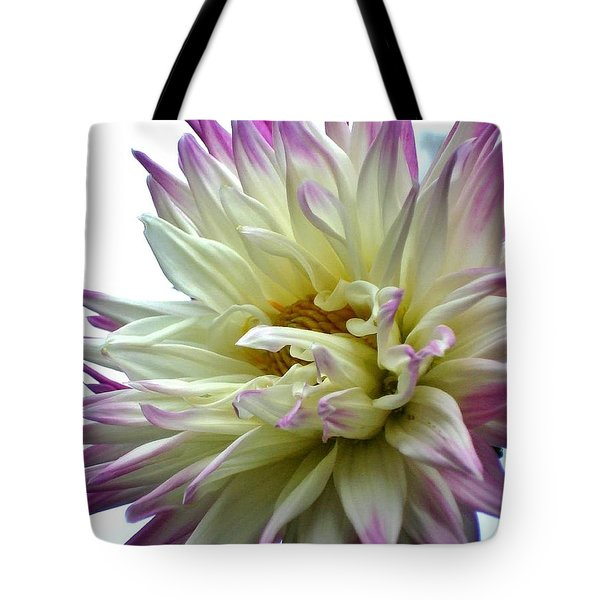 Tote Bag featuring the photograph Dahlia by Katy Mei