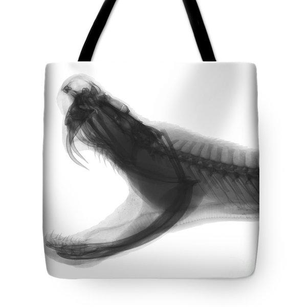 Eastern Diamondback Rattlesnake, X-ray Tote Bag by Ted Kinsman