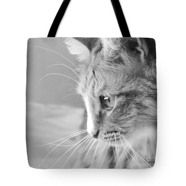 Black And White Cat Portrait Tote Bag