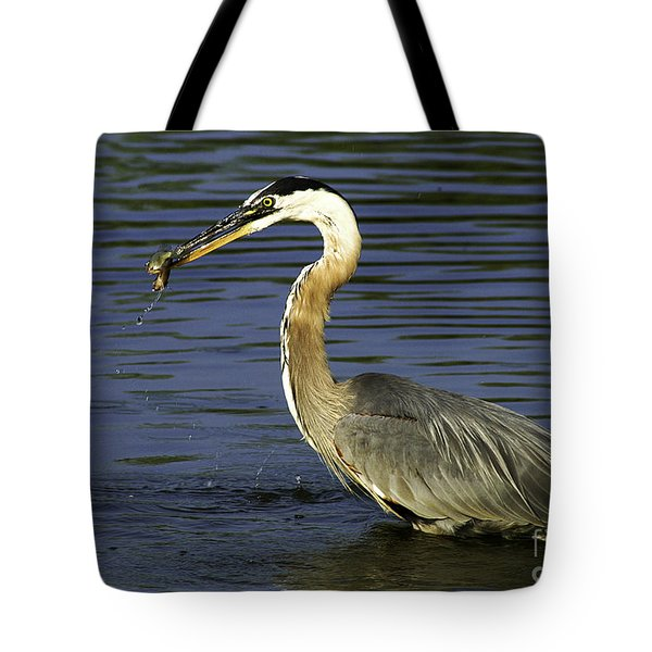 Tote Bag featuring the photograph 2 For 1 Dinner Special by Clayton Bruster