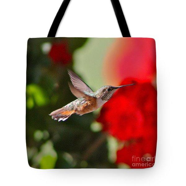 Hummingbird 3 Tote Bag