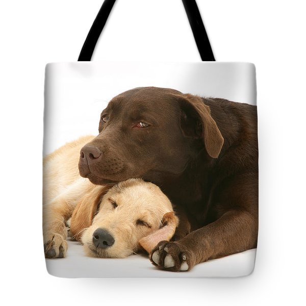 Labradoodle And Labrador Retriever Tote Bag by Jane Burton