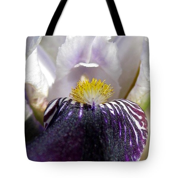 Tote Bag featuring the photograph Miniature Tall Bearded Iris Named Consummation by J McCombie
