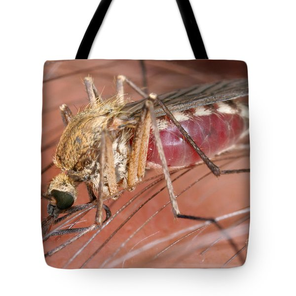 Mosquito Biting A Human Tote Bag by Ted Kinsman