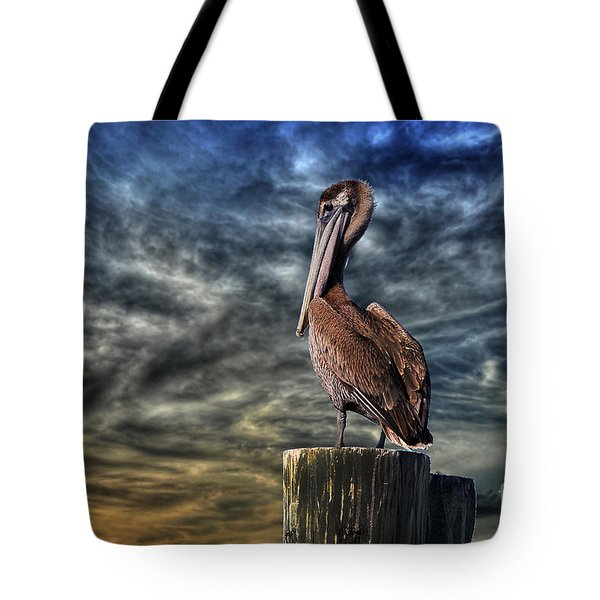 Tote Bag featuring the photograph Pelican At Sunset by Dan Friend