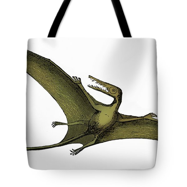 Pterodactyl Extinct Flying Reptile Tote Bag by Science Source