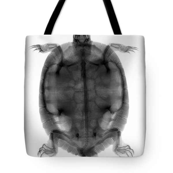 Red-eared Slider Turtle X-ray Tote Bag by Ted Kinsman