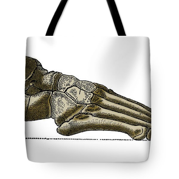 Right Foot Tote Bag by Science Source