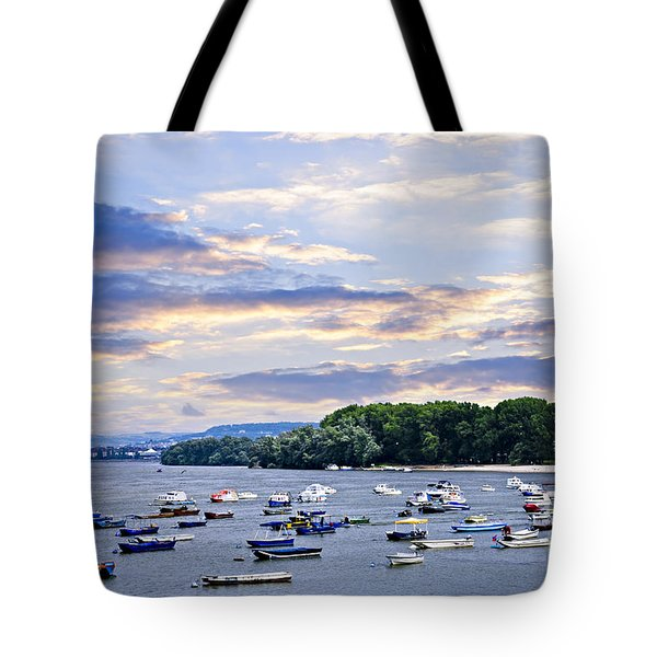 River Boats On Danube Tote Bag by Elena Elisseeva
