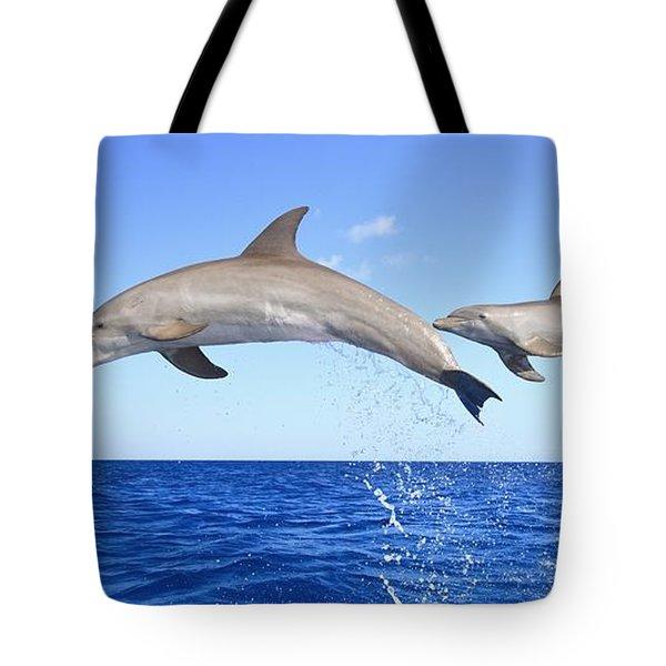 Roatan, Bay Islands, Honduras Tote Bag by Stuart Westmorland
