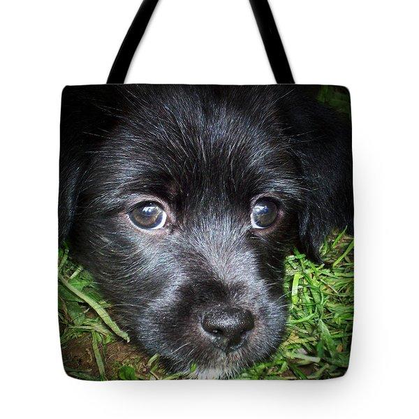 Sasha Tote Bag by Robert Orinski