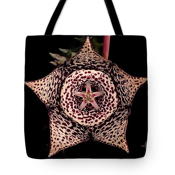 Stapelia Flower Tote Bag by Dant� Fenolio