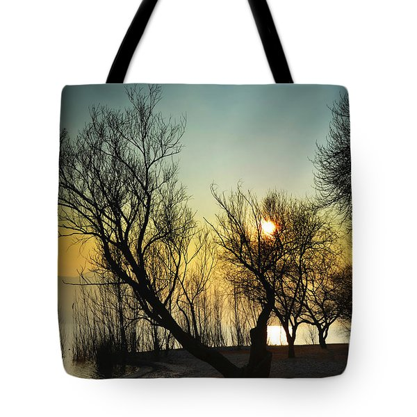 Sunlight Between The Trees Tote Bag