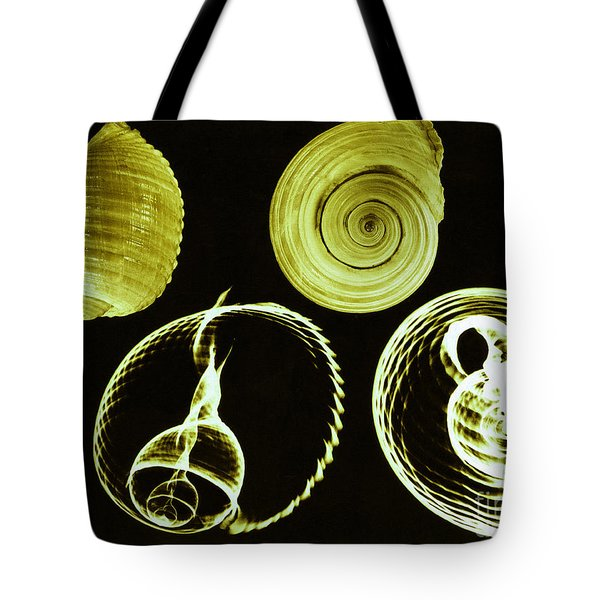 Tun Shell X-ray Tote Bag by Photo Researchers