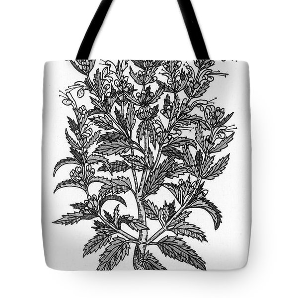 Turkey Balm Tote Bag by Science Source