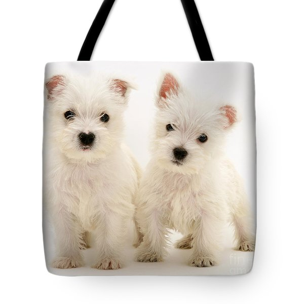 West Highland White Terriers Tote Bag by Jane Burton