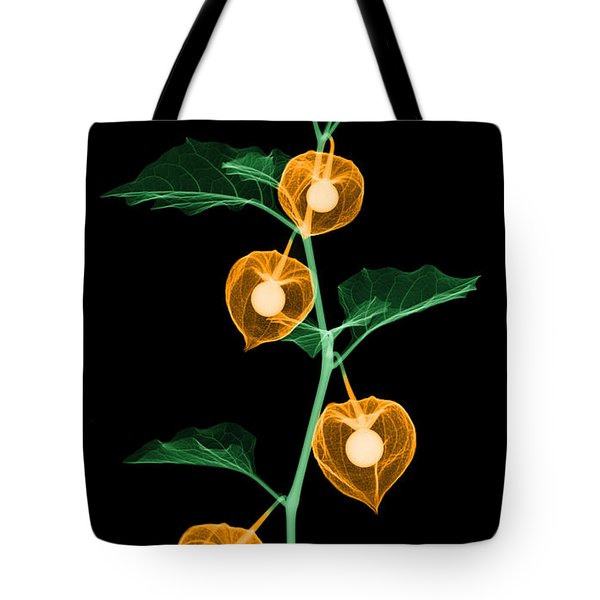 X-ray Of Chinese Lantern Plant Tote Bag by Ted Kinsman