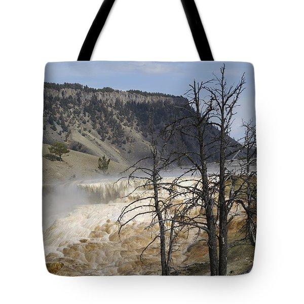 Yellowstone Nat'l Park Tote Bag