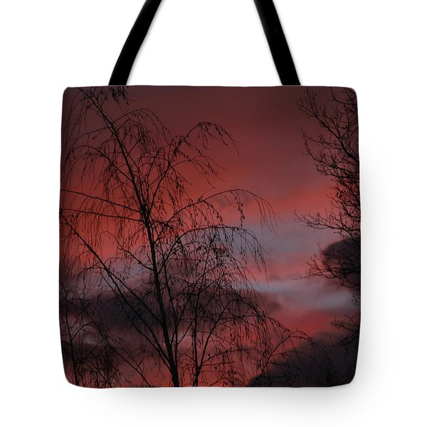 2011 Sunset 1 Tote Bag