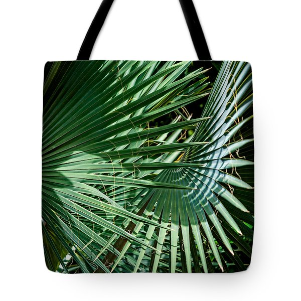 20120915-dsc09902 Tote Bag by Christopher Holmes