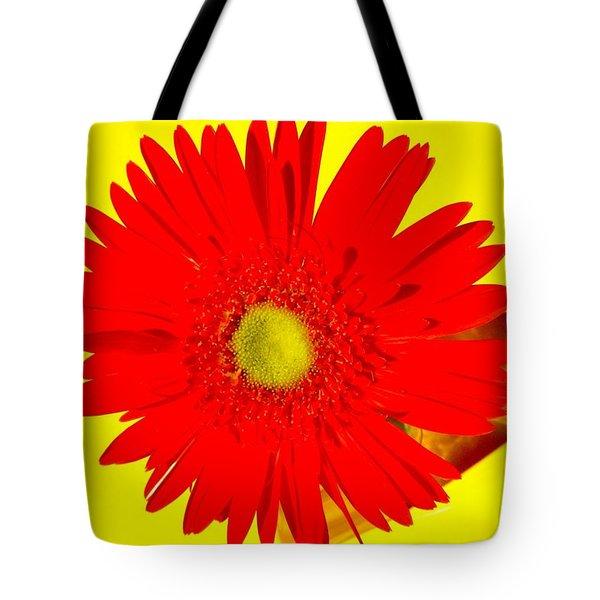 2024a2-001 Tote Bag by Kimberlie Gerner