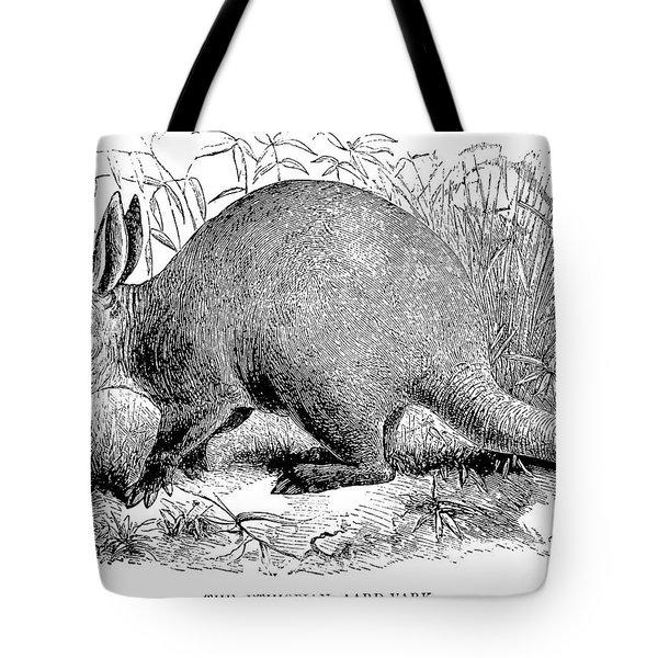 Aardvark Tote Bag by Granger