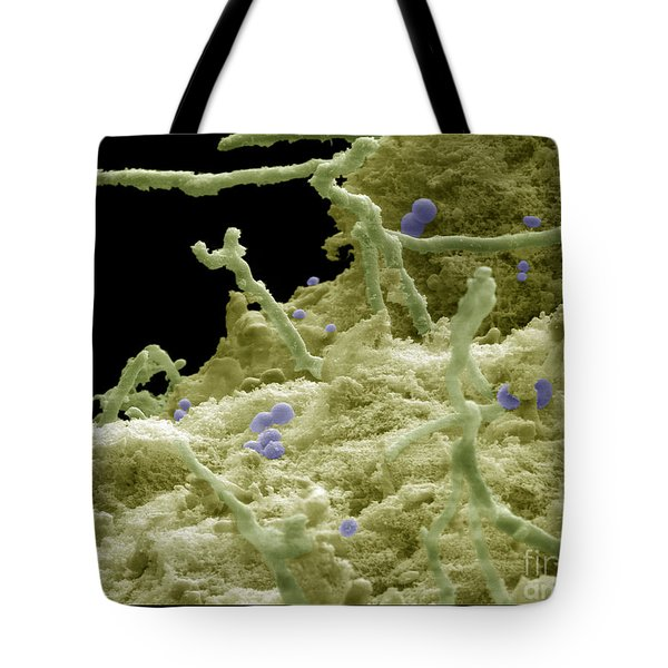 Blue Cheese Tote Bag by Ted Kinsman