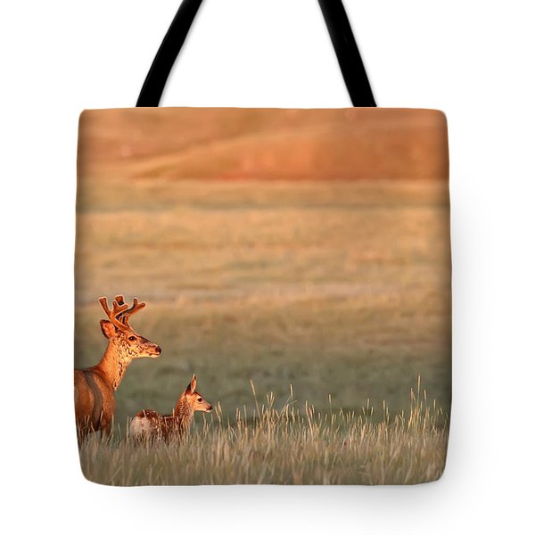 Digitally Enhanced Image With Painterly Tote Bag by Robert Postma
