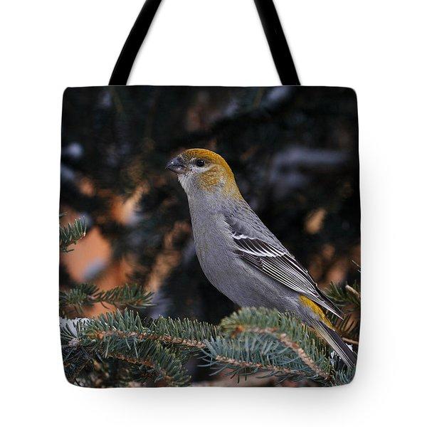 Female Pine Grosbeak Tote Bag