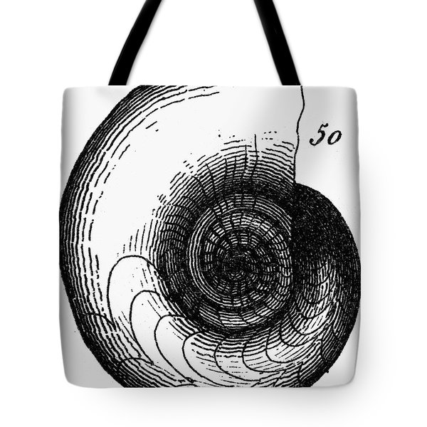 Fossil: Jurassic Period Tote Bag by Granger