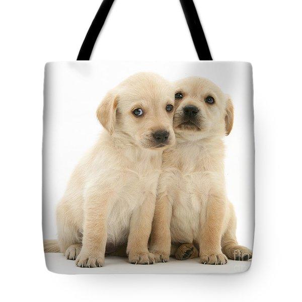 Labrador Retriever Puppies Tote Bag by Jane Burton