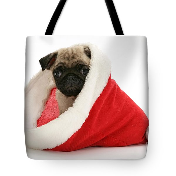 Pug Puppy Tote Bag by Jane Burton