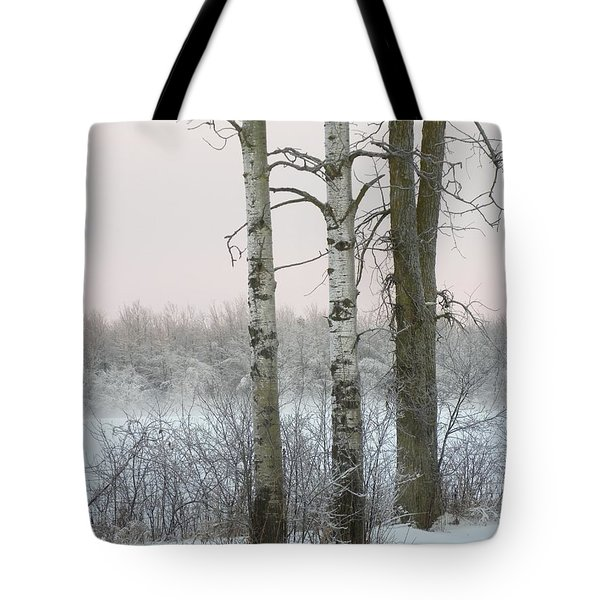 3 Standing Tall Tote Bag
